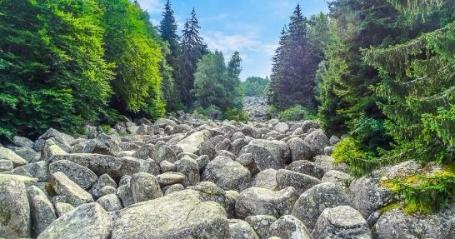 vitosha-mountain.jpg